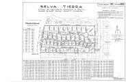 Selva Tierra (38-028)